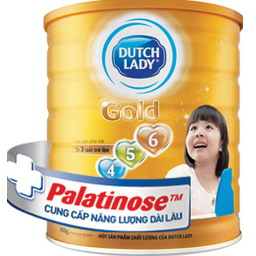 Dutch Lady Gold 456 (900gr)
